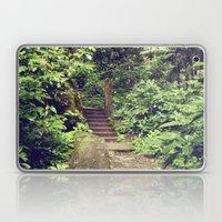 Rainforest Path Laptop & iPad Skin