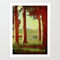 Daisy's in the field Art Print