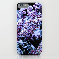iPhone & iPod Case featuring White Winter by lokiandmephotography