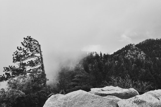 Canyon Fog Art Print