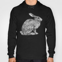 Eastern Cottontail Hoody