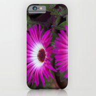 iPhone & iPod Case featuring Livingstone Daisies Pink… by Deborah Janke