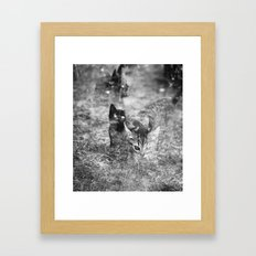 Les chats fantômes Framed Art Print