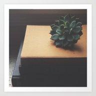 Succulent (2) Art Print