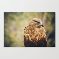 What Can I Do Canvas Print