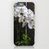 White Orchid iPhone 6 Slim Case