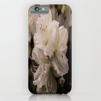 iPhone & iPod Case featuring Blossom by Riley Gallagher