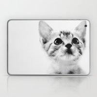 Sweet Kitten Laptop & iPad Skin