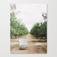 Chair In The Orchard Canvas Print
