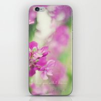 Chase Your Wildest Dreams iPhone & iPod Skin