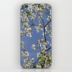 Through the Canopy iPhone & iPod Skin