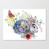 Spring Jackalope Canvas Print