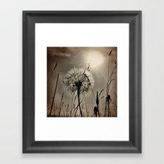 Summer madness Framed Art Print