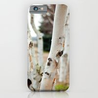 iPhone & iPod Case featuring Line of Birches by Katie Kirkland Photography