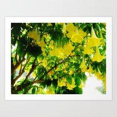 Yellow Flowers. Art Print