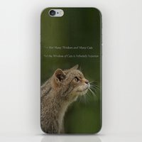 The Wisdom Of Cats iPhone & iPod Skin