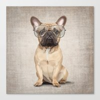 Mr Bulldog Canvas Print