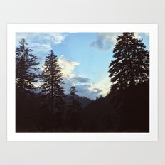 Newfound Gap Art Print