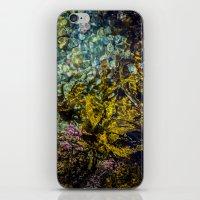 rockpool iPhone & iPod Skin