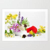 Des herbes naturelles Art Print