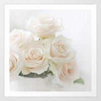 blush roses Art Print