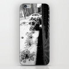 Winter Wonder iPhone & iPod Skin