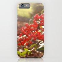 Red Berries iPhone 6 Slim Case