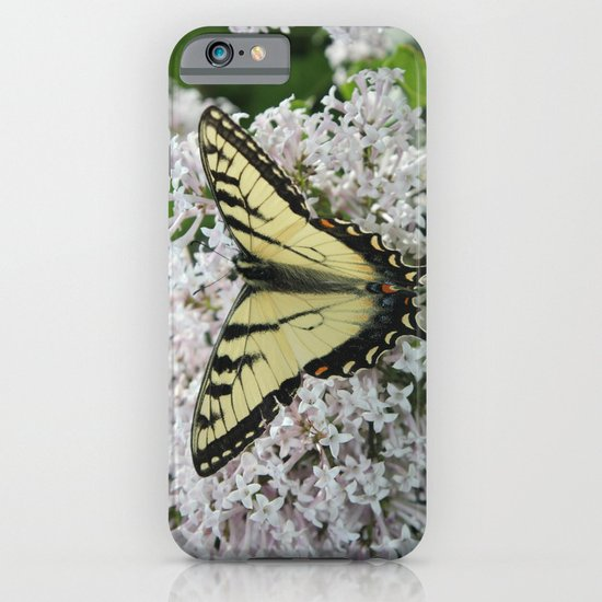 Butterfly Delight iPhone & iPod Case