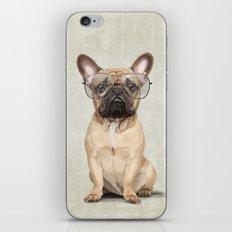 Mr French Bulldog iPhone & iPod Skin
