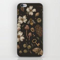 Nature Walks iPhone & iPod Skin