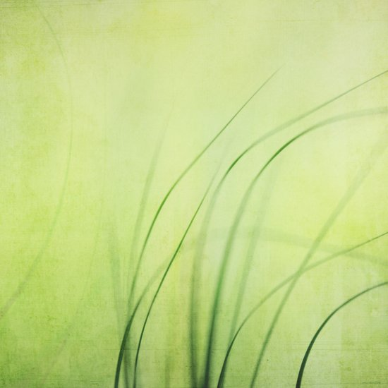 Swaying Grasses (with texture) Art Print