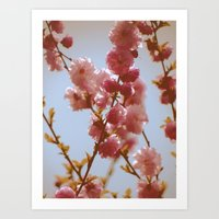 Early March Art Print