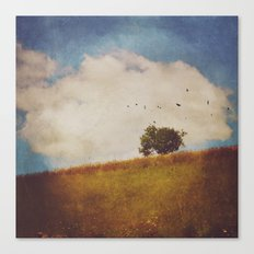A Beautiful Afternoon Canvas Print