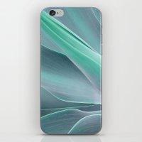 Blue Green Agave Attenuata iPhone & iPod Skin