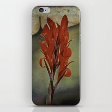 Churchyard Flower iPhone & iPod Skin