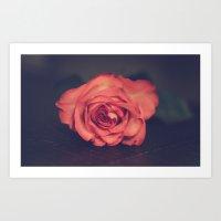 Rose_04 Art Print