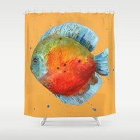 DISCUS FISH, Discus Cush… Shower Curtain