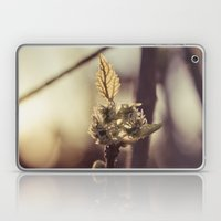 Raspberry sprout Laptop & iPad Skin
