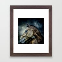 Stallion Framed Art Print