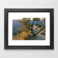 Treedom Framed Art Print
