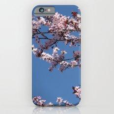 Sakura Blossoms Slim Case iPhone 6s