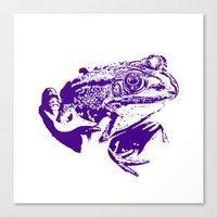 purple frog II Canvas Print
