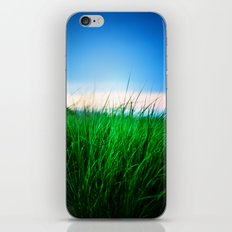 The first state iPhone & iPod Skin