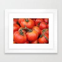 Bright Red Garden Tomatoes Framed Art Print