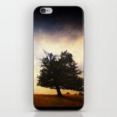 Momentum iPhone & iPod Skin