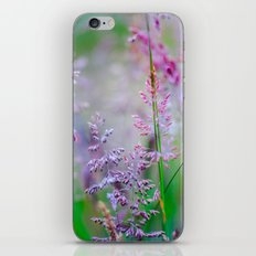 Ruckle Park iPhone & iPod Skin