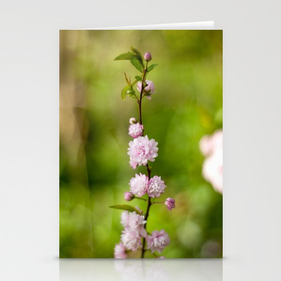 Flowering Almond Blossoms Stationery Card