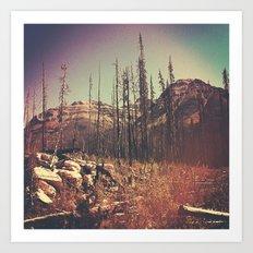 Burnt Forest I Art Print
