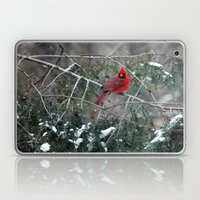 Winter Cardinal Laptop & iPad Skin