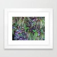 Rainforest No.9 Framed Art Print
